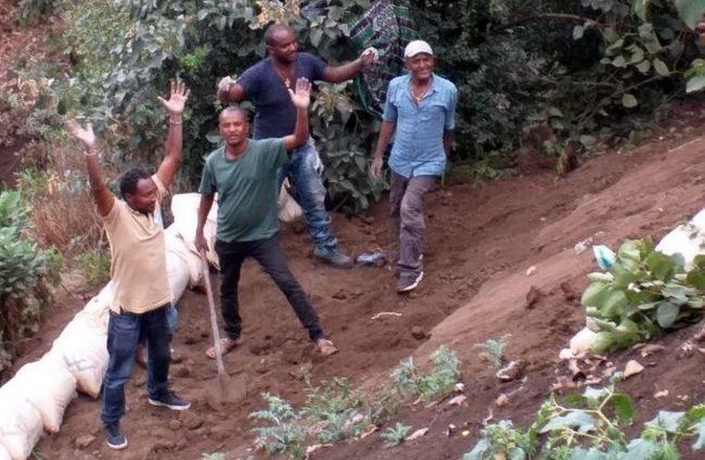 mai7Gemüsebauern in Lalibela.jpg