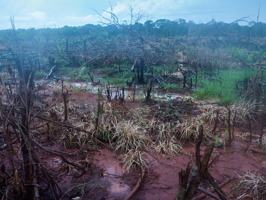 Waldbrand Amazonas copyright:Adveniat.de