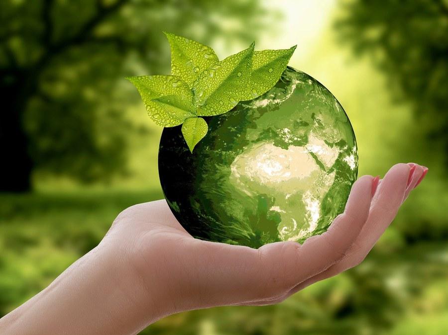 Nachhaltigkeit FOTO PIXABAY 3289812