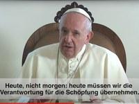 Papst verurteilt Plündern der Schöpfung