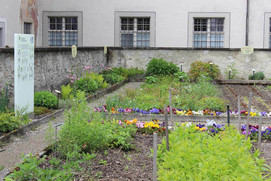Im Kloster Fahr bei Zürich erblüht seit Frühling 2021 der erste Laudato-si-Garten der Schweiz.