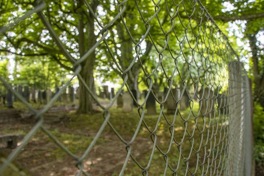 Jüdischer Friedhof, Foto: Lukas Naef