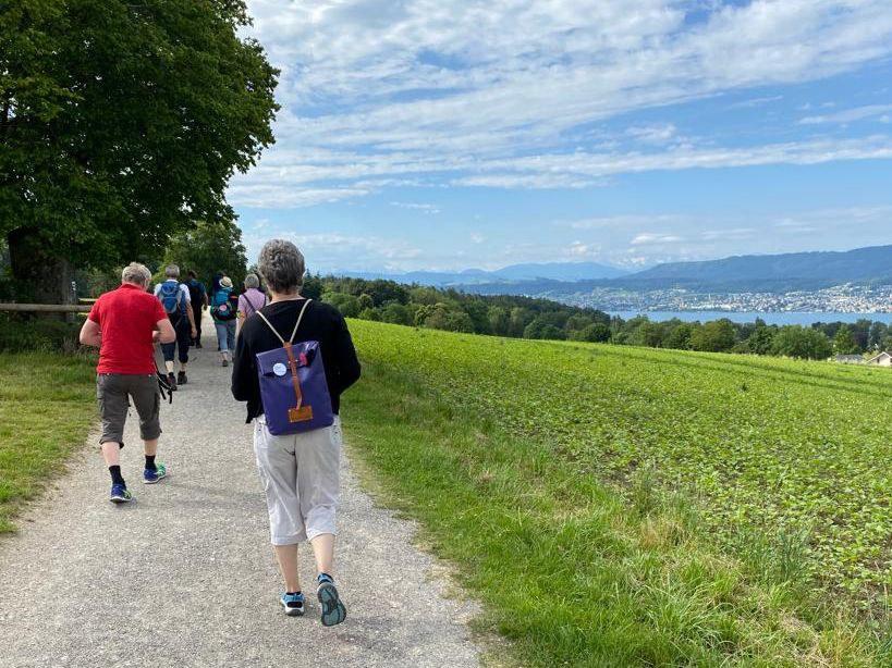 Seelsorgende, pilgernd unterwegs von Zürich nach Chur